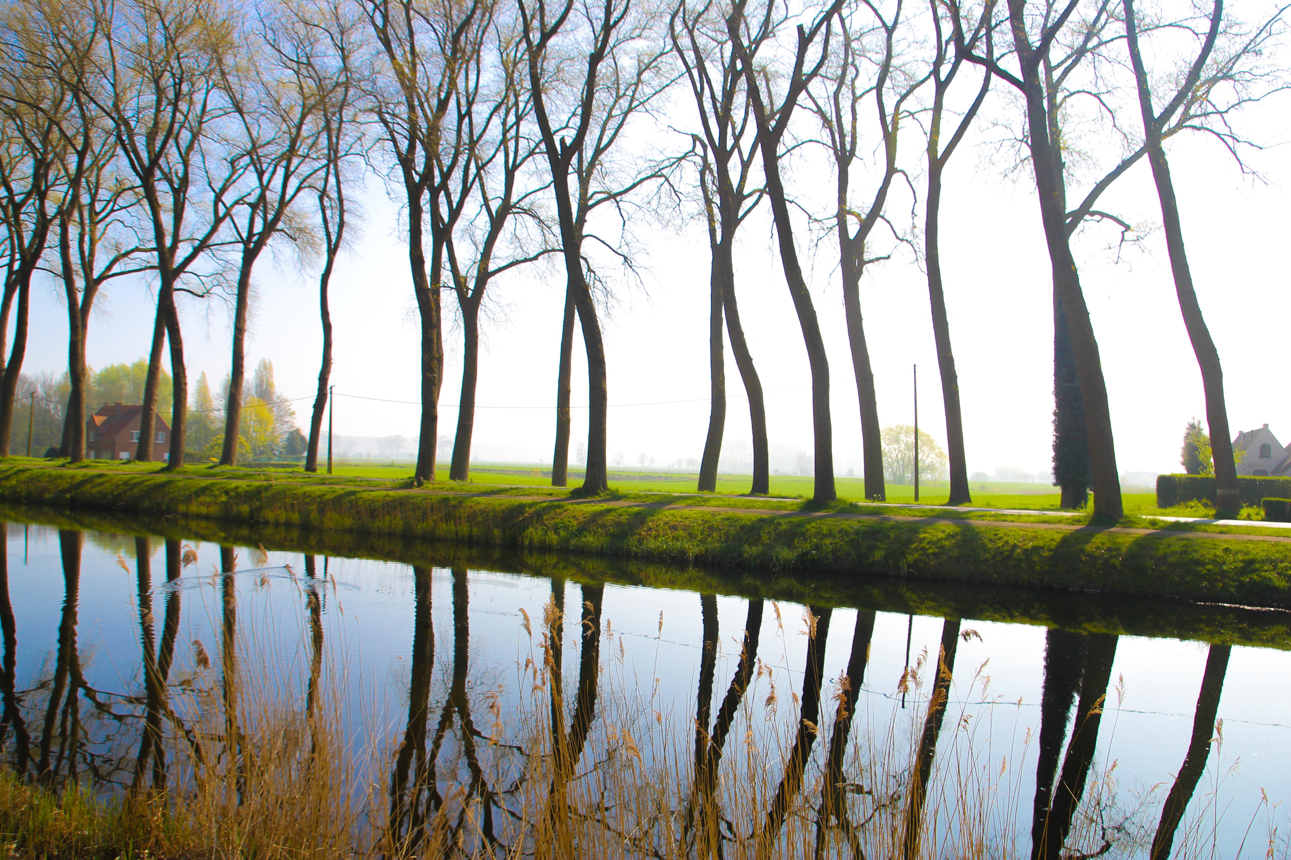 Canal de damme - balade velo Bruges damme